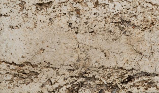 Fondo de mortero, textura de cemento, pared
