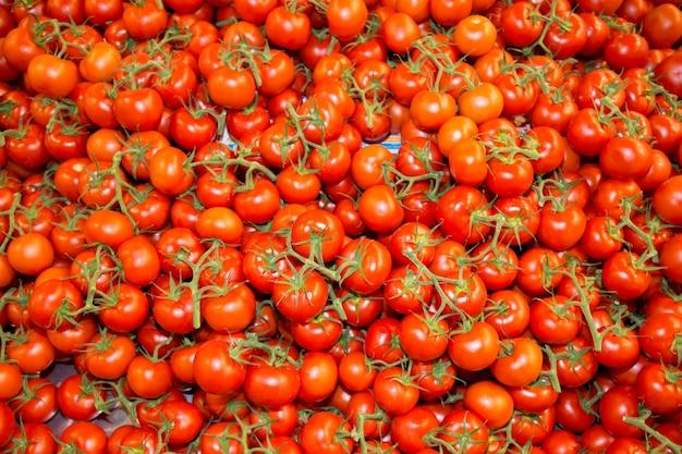 Fondo de muchos tomates de rama roja