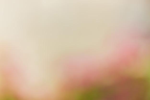 Fondo natural abstracto rosa y verde