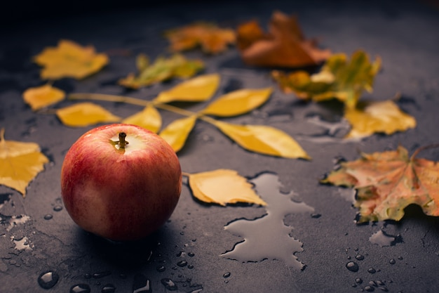 Fondo oscuro de otoño