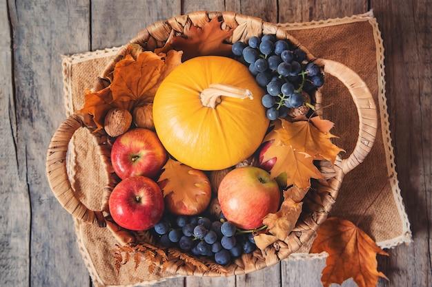Fondo de otoño con calabaza. día de gracias. enfoque selectivo.