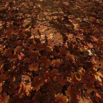 Fondo de otoño de hojas de arce para papel tapiz en la naturaleza y escena publicitaria