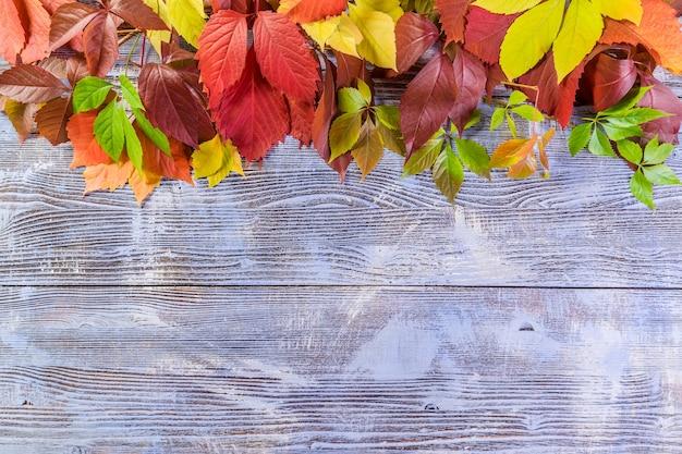 Fondo de otoño de naturaleza con hojas sobre mesa rústica. vista superior