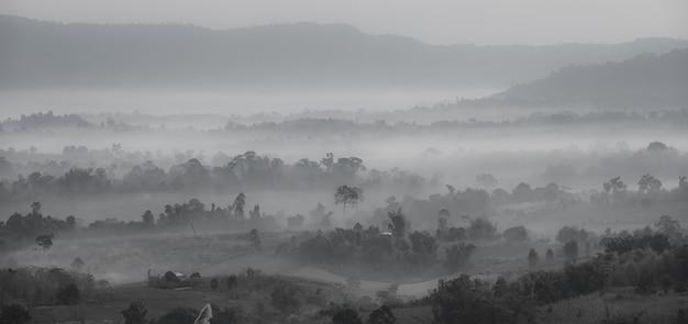 Fondo de pantalla de fondo de montaña y niebla en blanco y negro