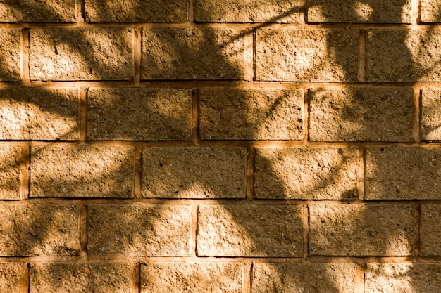 Fondo de pared de ladrillo y sombras de árboles
