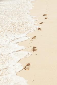 Fondo de pies humanos de pies humanos en la arena de la playa cerca del agua, composición vertical