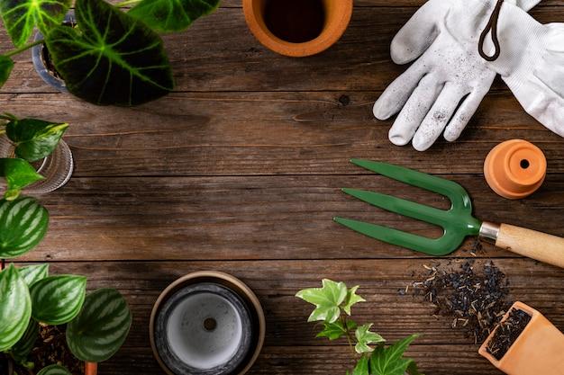 Fondo de planta de madera con las herramientas de jardinería para hobby