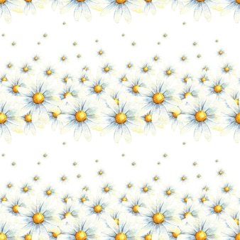 Fondo de plantilla acuarela de patrones sin fisuras de manzanilla margarita