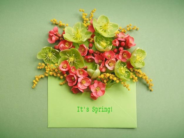 Fondo de primavera colorida con flores rosas y verdes