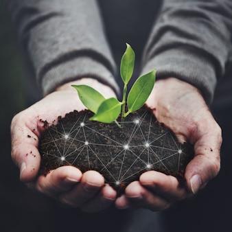 Fondo de publicación de redes sociales de tecnología agrícola de productos de plantas verdes de agricultura inteligente 5.0