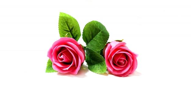 Fondo rosa roja