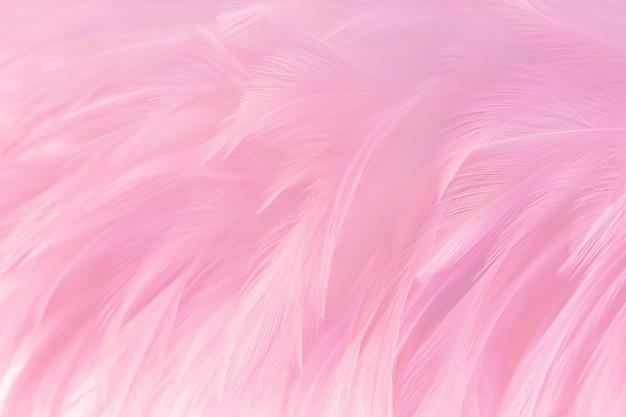 Fondo rosado suave de la textura de las plumas.