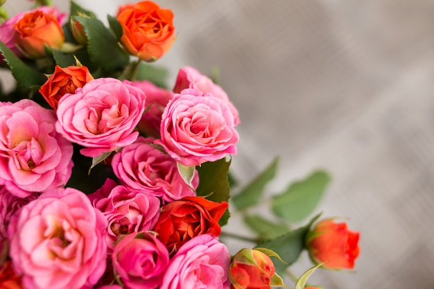 Fondo de rosas de color suave