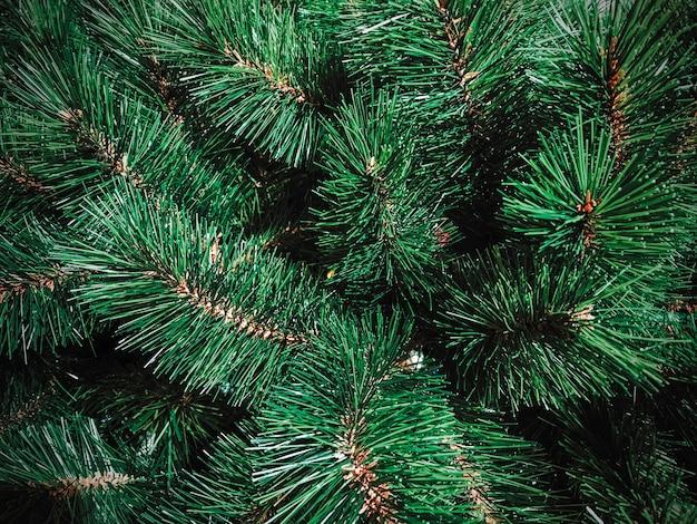 Fondo de textura de árbol de navidad
