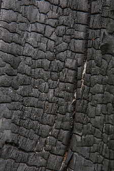 Fondo de textura de corteza de árbol quemado. patrón de textura de tronco de árbol de madera vieja