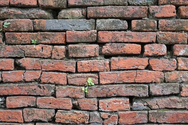 Fondo de textura de pared de ladrillo crack