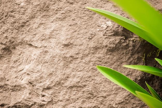 Fondo de textura de piedra de arena