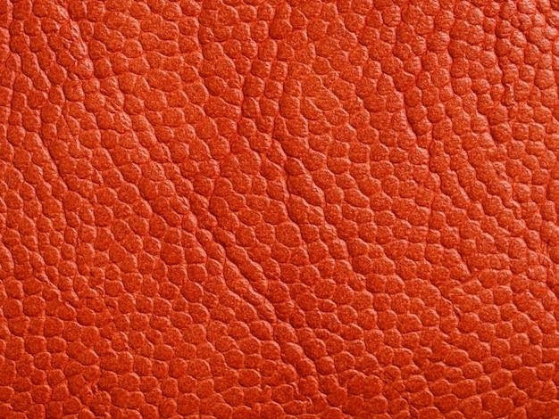 Fondo de textura de piel