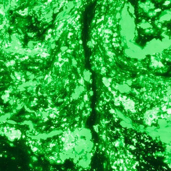 Fondo texturizado coloreado holi verde abstracto