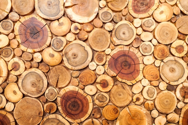 Fondo de tocones de madera redonda, sección de corte de árboles para textura de fondo.
