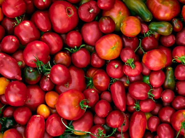 Fondo con tomates rojos maduros.
