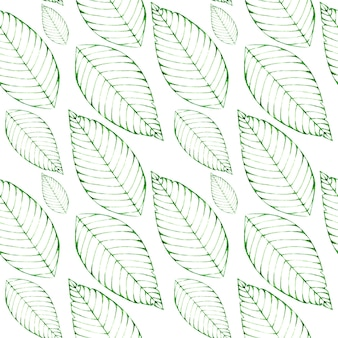 Fondo transparente acuarela con hojas verdes