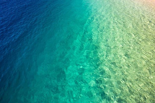 Fondo tropical del mar de maldivas
