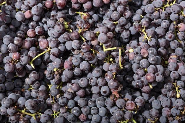 Fondo de uvas rojas frescas