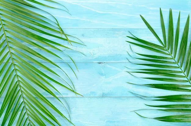 Fondo de vacaciones de verano con hojas de palmera