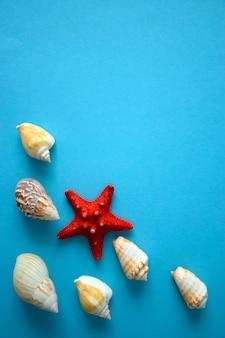 Fondo de verano con conchas marinas y marco decorativo de estrellas de mar para el texto. concepto de viajes de vacaciones de verano. vista superior de conchas marinas sobre fondo azul en estilo minimalista, espacio de copia.
