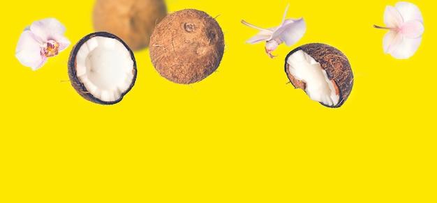 Fondo de verano tropical amarillo con cocos cayendo