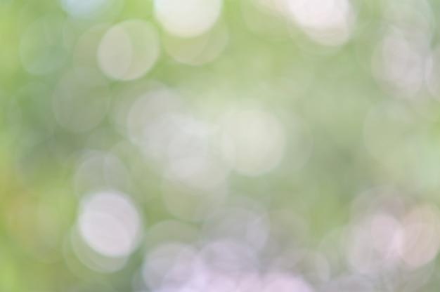 Fondo verde abstracto del bokeh de la hoja, fondo abstracto borroso verde del fondo del sol del follaje