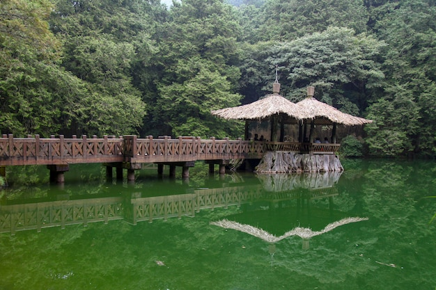 La forma de caminar va al pabellón en el área del parque nacional alishan en taiwán.