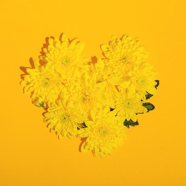 Forma de corazón de crisantemos amarillos sobre una superficie amarilla