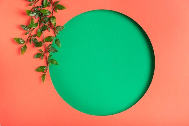 Forma geométrica hecha a mano con hojas al lado