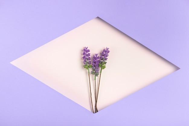 Forma geométrica de papel con lavanda