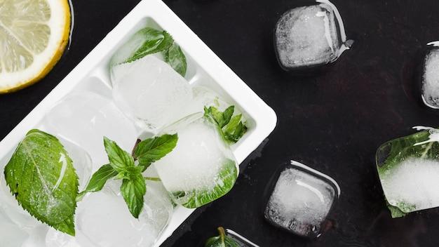 Forma para hielo y cubitos de hielo con menta.