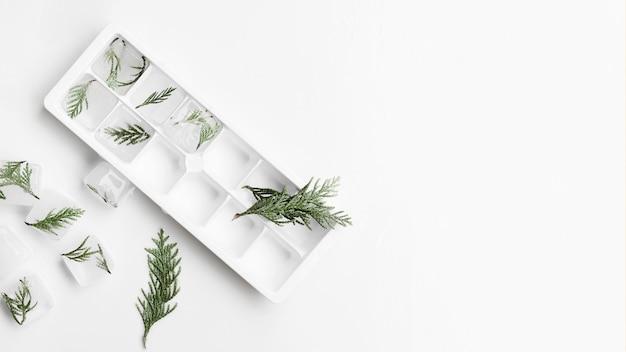Forma para hielo y cubitos de hielo con ramitas.