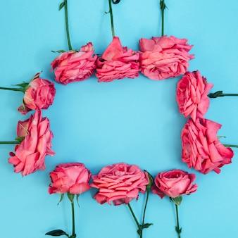 Forma rectangular hecha de rosas rosadas sobre fondo turquesa