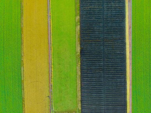 Foto aérea de la vista superior del avión no tripulado volando de una tierra con campos verdes sembrados