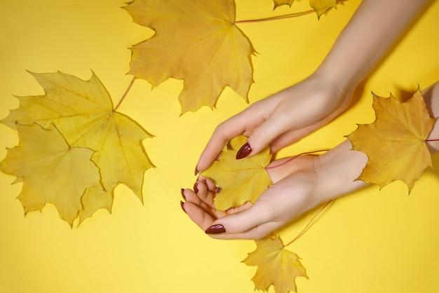 La foto creativa de la belleza da a muchachas el fondo amarillo con las sombras coloreadas. protección de la piel.