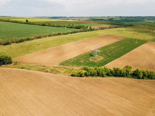 Foto de dron de la tierra de cultivo de cereales durante la primavera