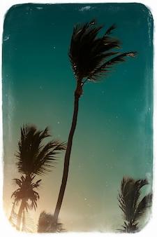 Foto en estilo retro con red de voleibol en la playa y palmeras detrás del cielo azul de verano