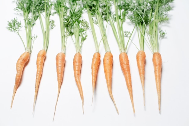Foto de estudio de zanahorias pequeñas con tapas verdes, sobre el fondo blanco.