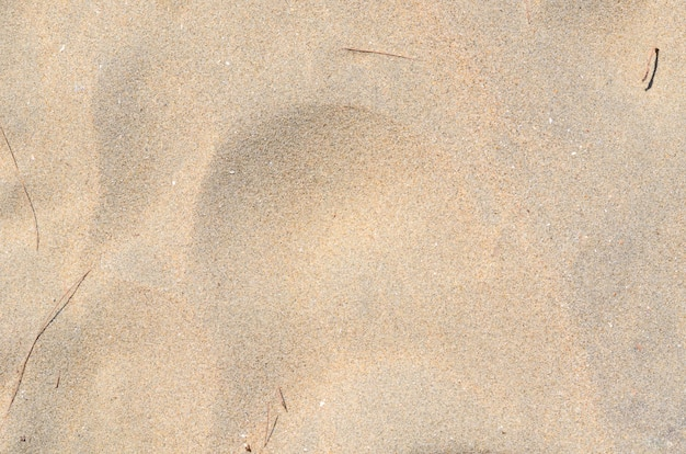 Foto del fondo y de la textura de la arena en la playa.