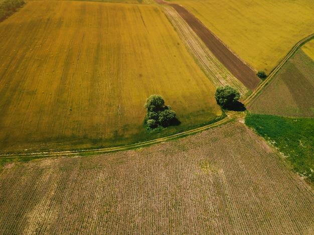 Foto del hermoso paisaje con dorne, concepto de agricultura