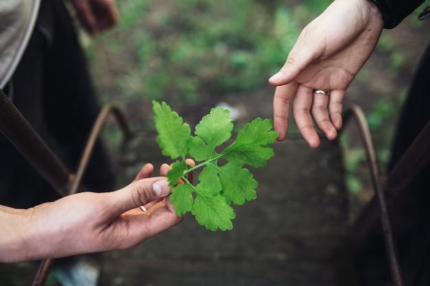 Foto de un par de manos cerca de los columpios. cerrar vista