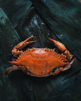 Foto de primer plano de un cangrejo naranja, vista superior