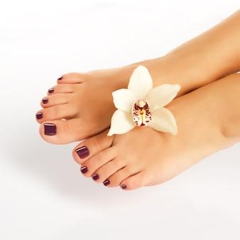 Foto en primer plano de pies femeninos con hermosa pedicura después del procedimiento de spa en blanco