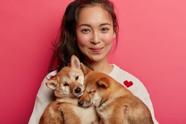 Foto recortada de una mujer bonita que mira con alegría a la cámara, posa con dos pequeños y hermosos perros shiba inu que duermen en sus manos, siendo buenos amigos.